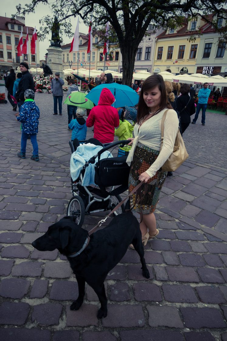 Szybki spacer po rynku rzeszowskim