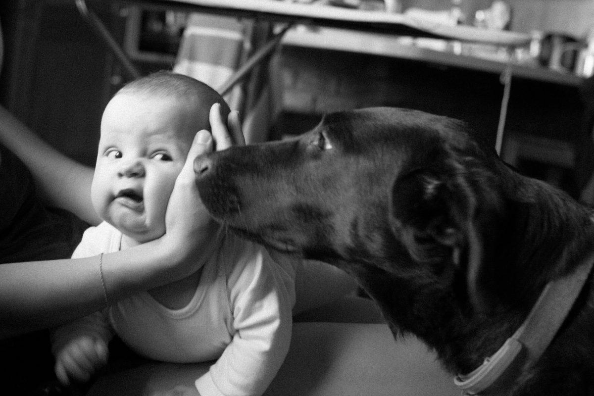Przyjaciele pozostaną przyjaciółmi