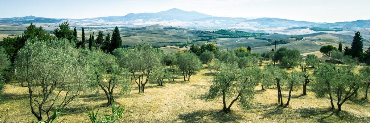 Toskania - dużo zdjęć